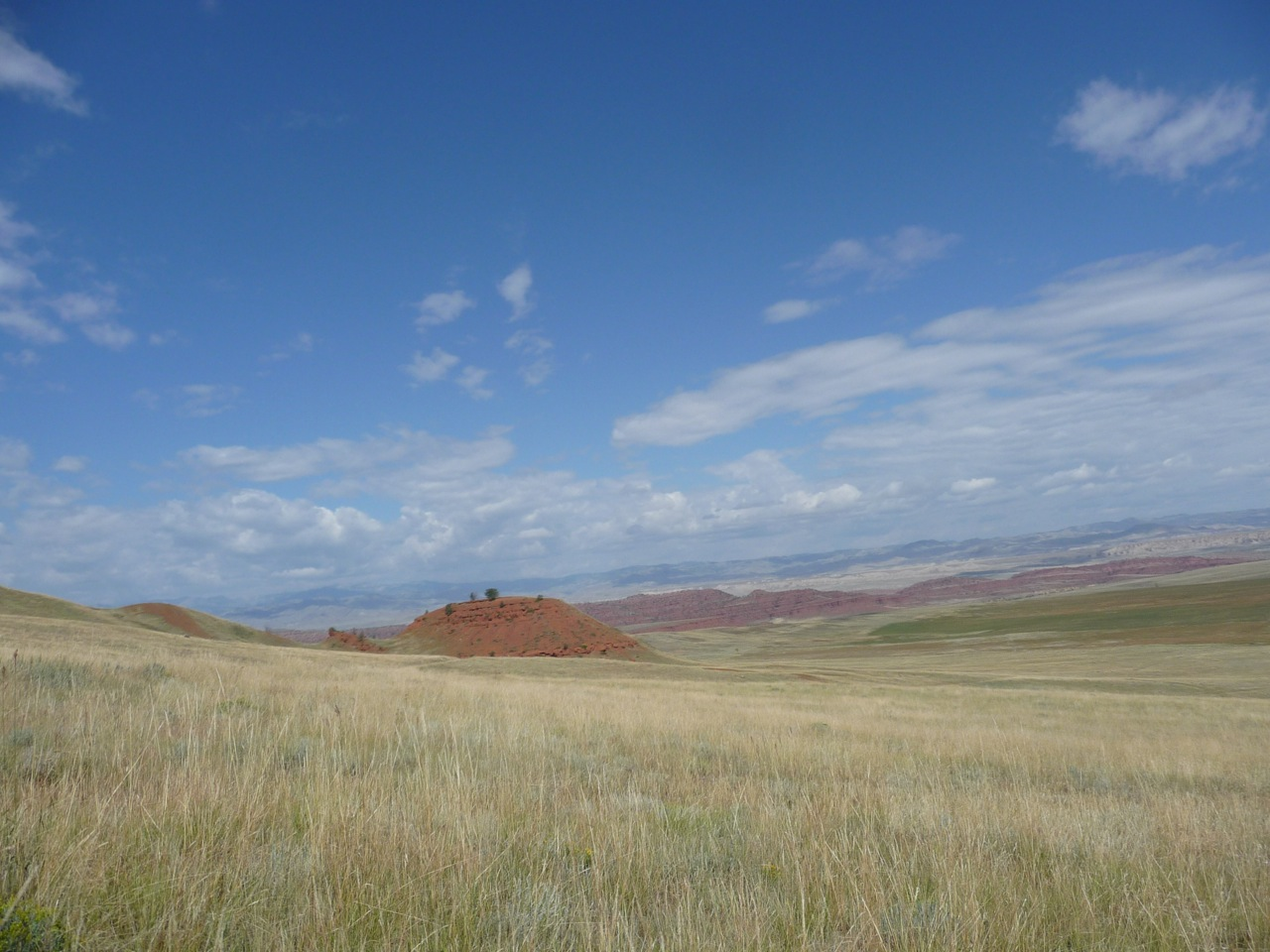 Photo of the drylands
