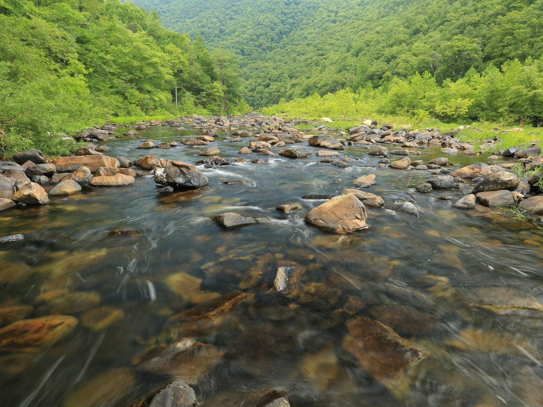 Maury River,  Virginia - Credit: Alan Cressler