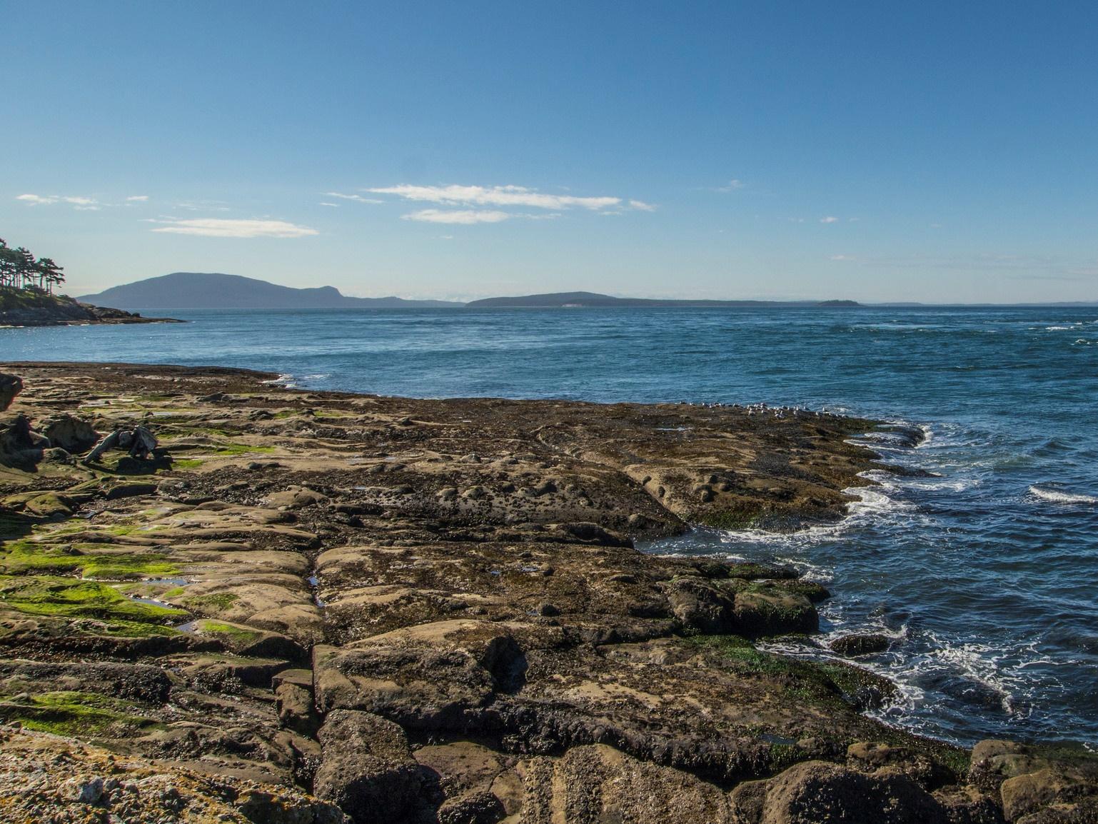 The Salish Sea - Credit: BLM