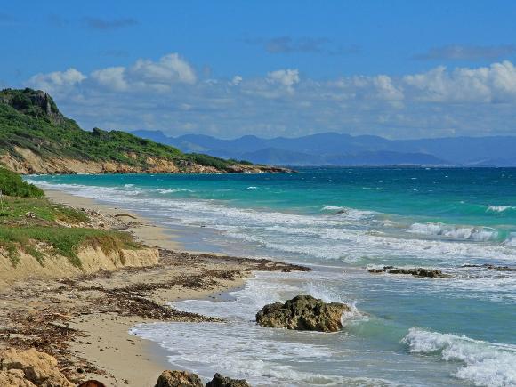 Isla Caja de Muertos, Puerto Rico - Credit: Alan Cressler