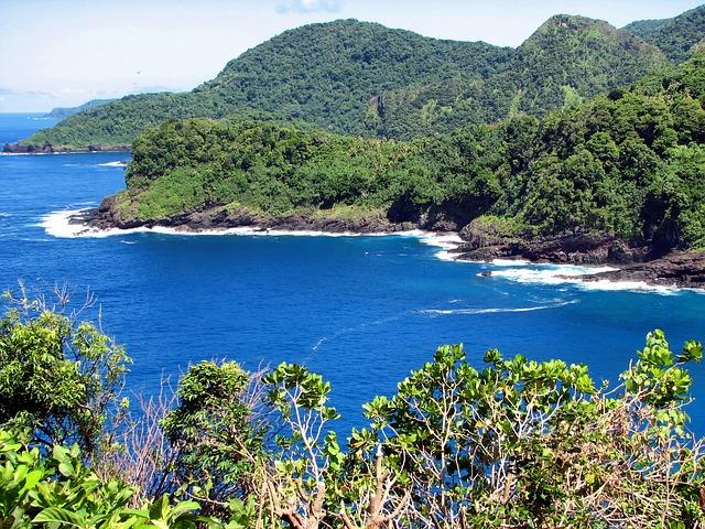 American Samoa Landscape and Forest - Public Domain (CC0)