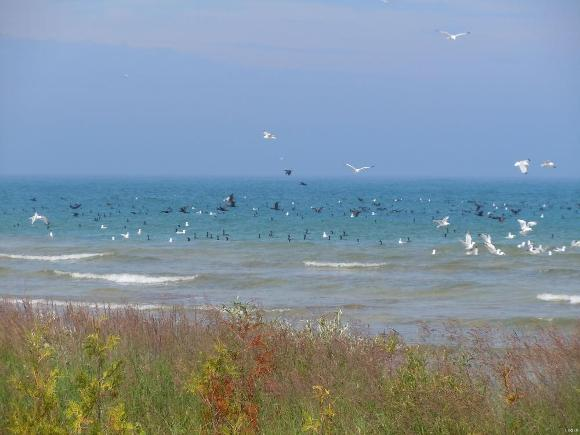 Lake Michigan - Credit: John Tracey, USGS