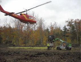 Pelletized limestone applied by helicopter to a subwatershed of Honnedaga L.