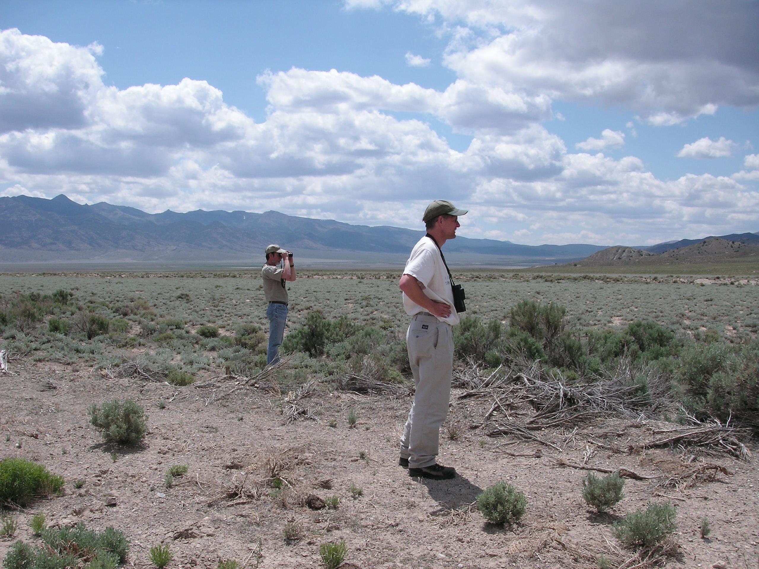 Antelope Valley, Eureke County, Nevada - Credit: Erica Fleishman