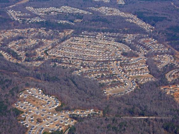 Urban forests, Atlanta suburb - Credit: Alan Cressler