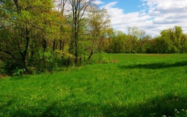 Conservation easement along the Houstatonic River