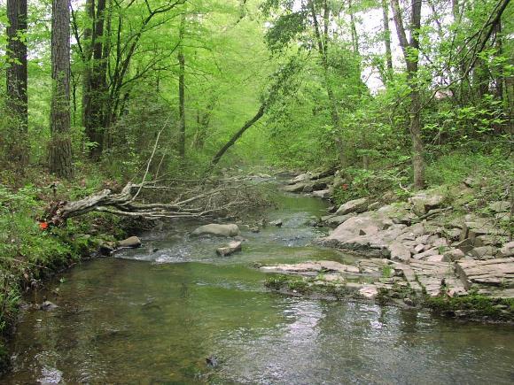 Little Sugarloaf Creek near Bonnerdale, AR (APugh, 2002)