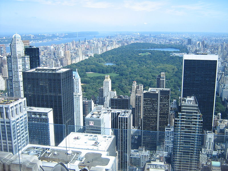 Title: Picture of downtown New York overlooking Central Park