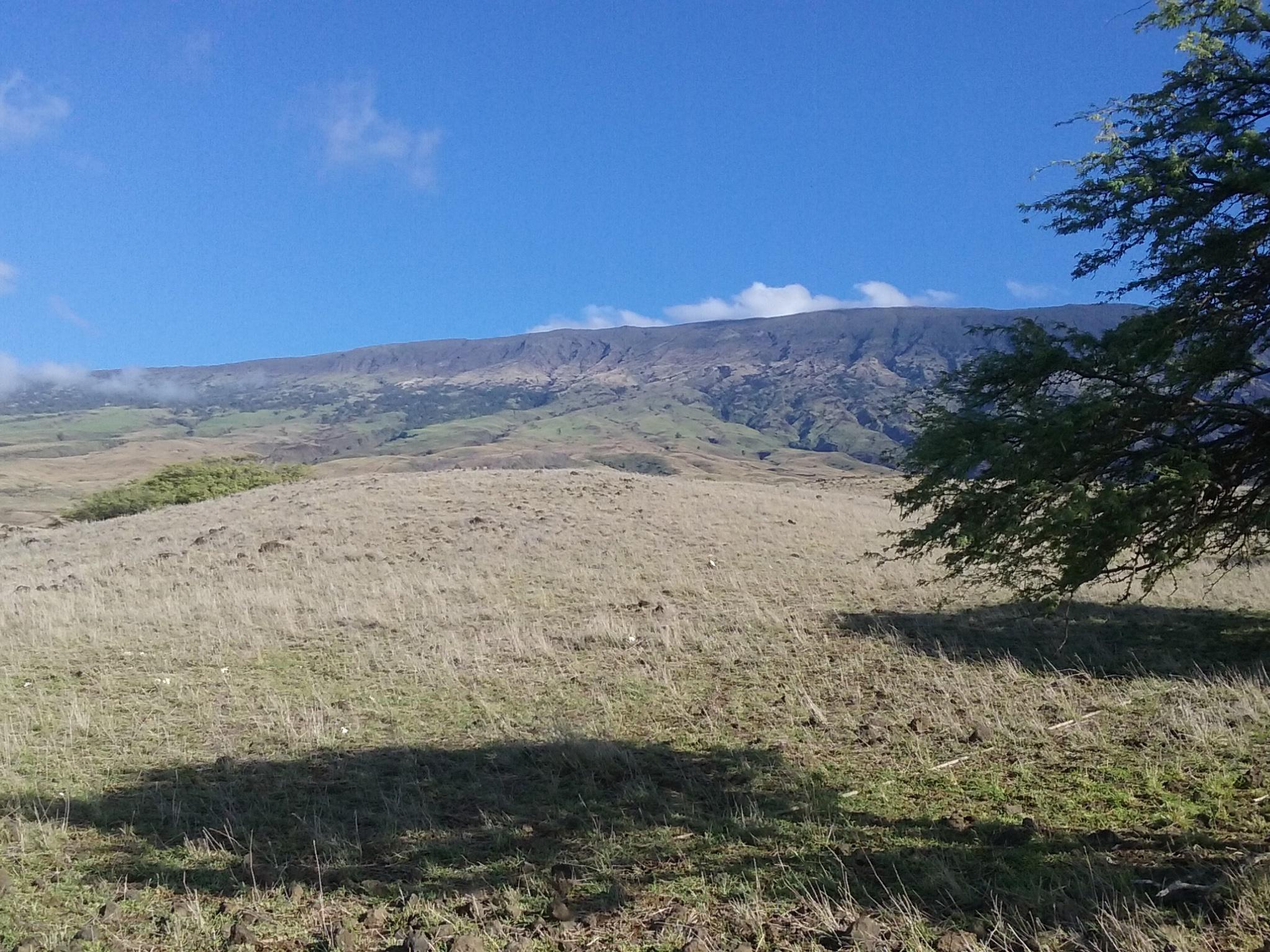 Southeast Haleakala - Credit: Alan Mair, USGS