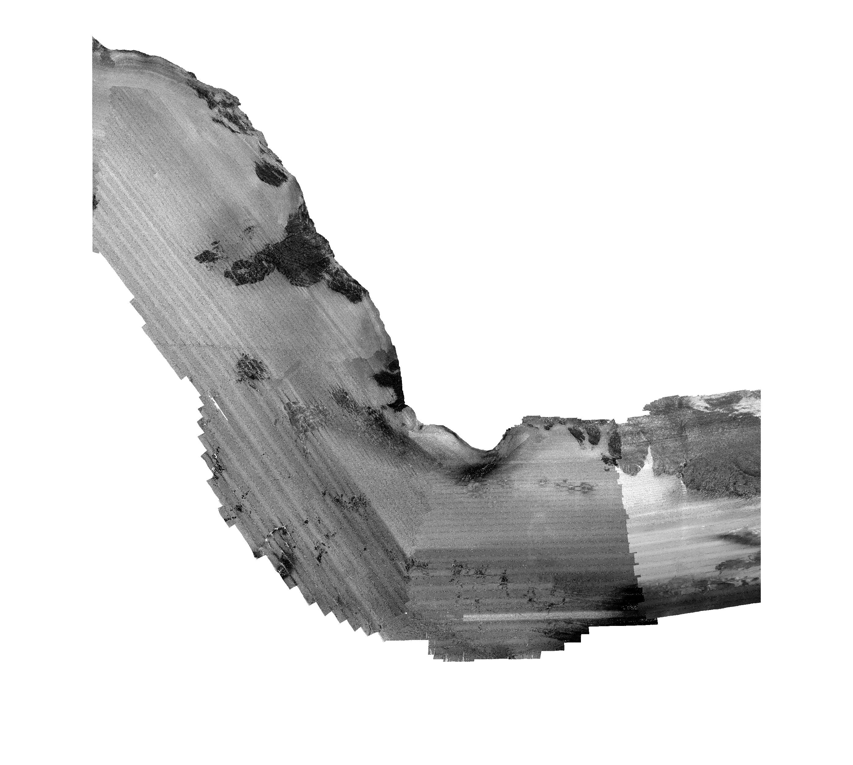 Thumbnail of file.