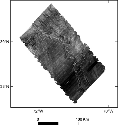 Browse graphic of the backscatter intensity of the sea floor of the Hudson Canyon region.