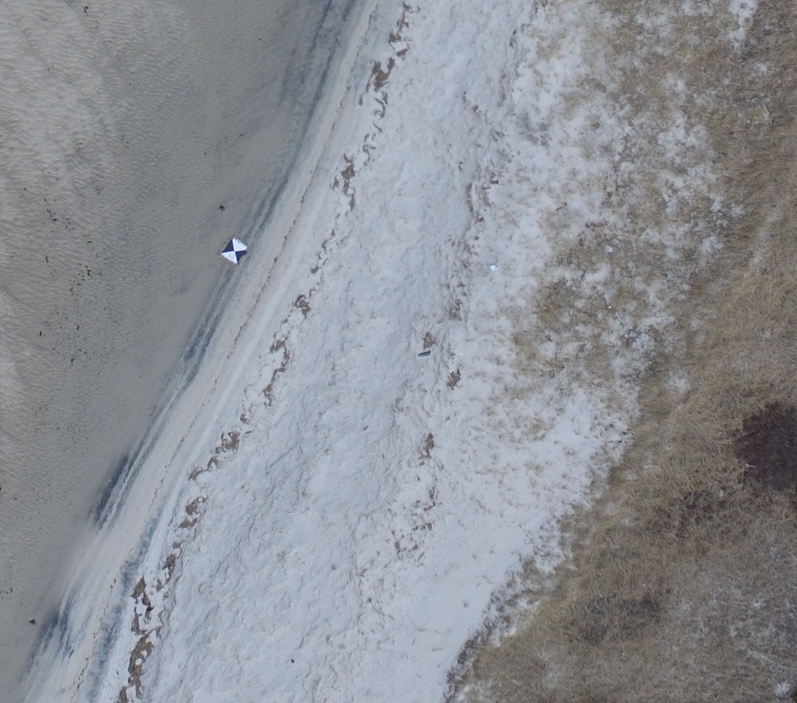 Example section of image acquired by DJI Phantom 3 on 18 March 2016 at Black Beach, Falmouth, MA. Section includes a target used for ground control.