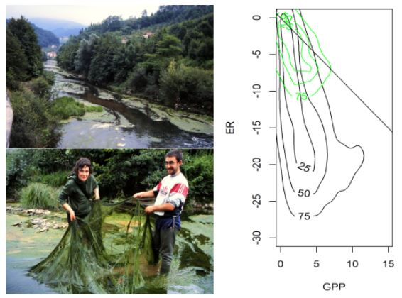 Two photos of the Oria River and its metabolic fingerprint before (black) and af