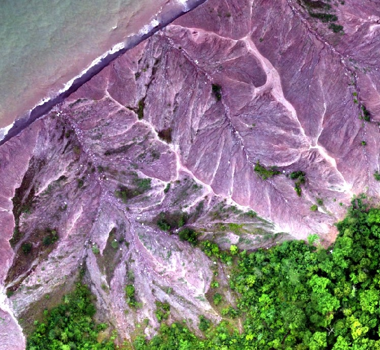 Browse image of a portion of an orthomosaic generated from photogrammetry and low-altitude aerial images obtained with unmanned aerial systems (UAS).