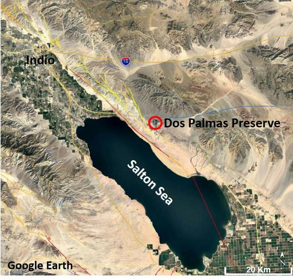 Google Earth image of study area