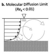 Title: Figure 1b - molecular diffusion modified by the tortuosity of the sediments
