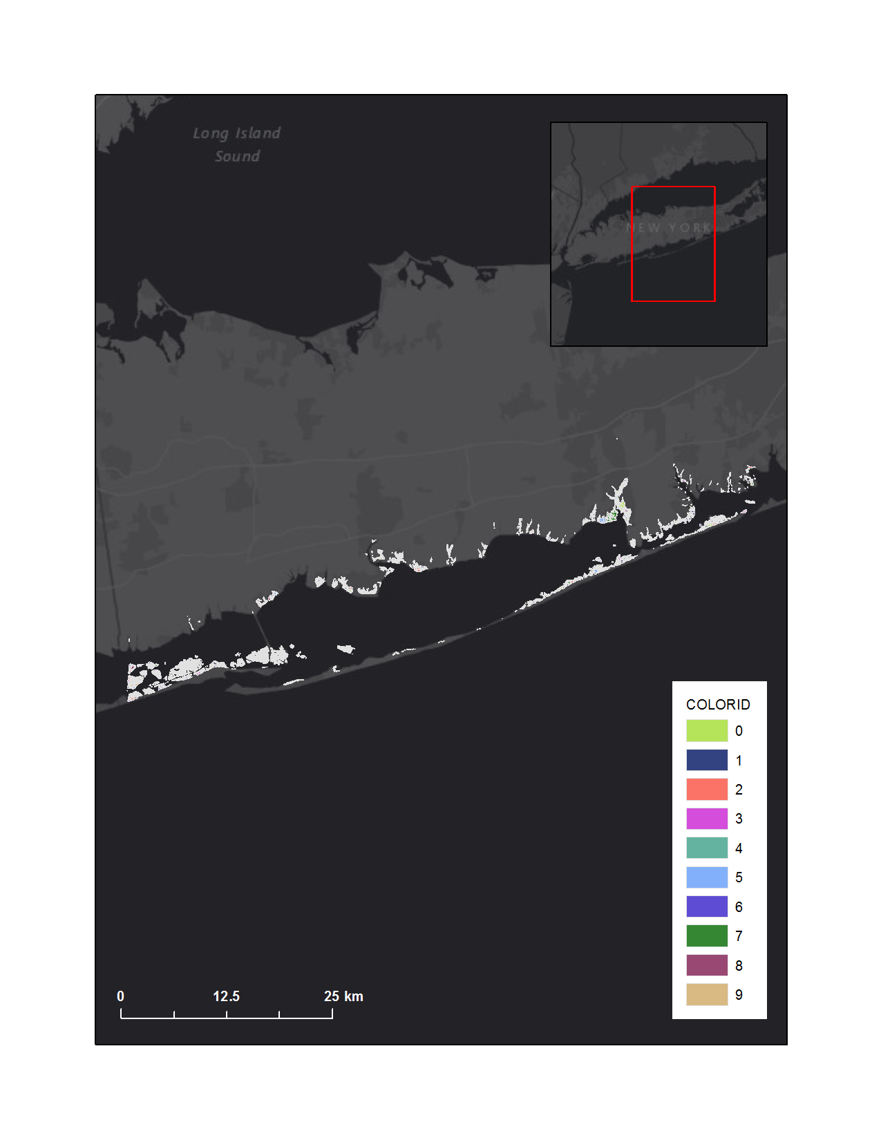 Graphic that shows conceptual marsh units of FIIS salt marsh complex overlaying Esri basemap.
