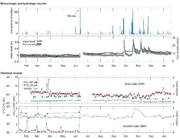 Browse graphic of precipitation, hydrologic, and chemical records.