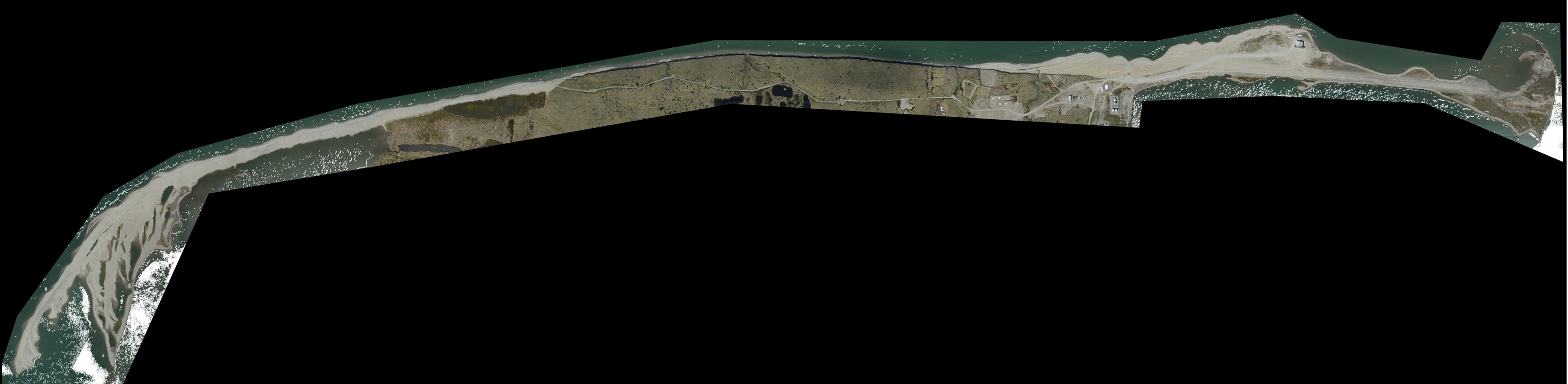 Browse image of the orthomosaic generated from photogrammetry and aerial images acquired over Barter Island, Alaska July 05 2015.