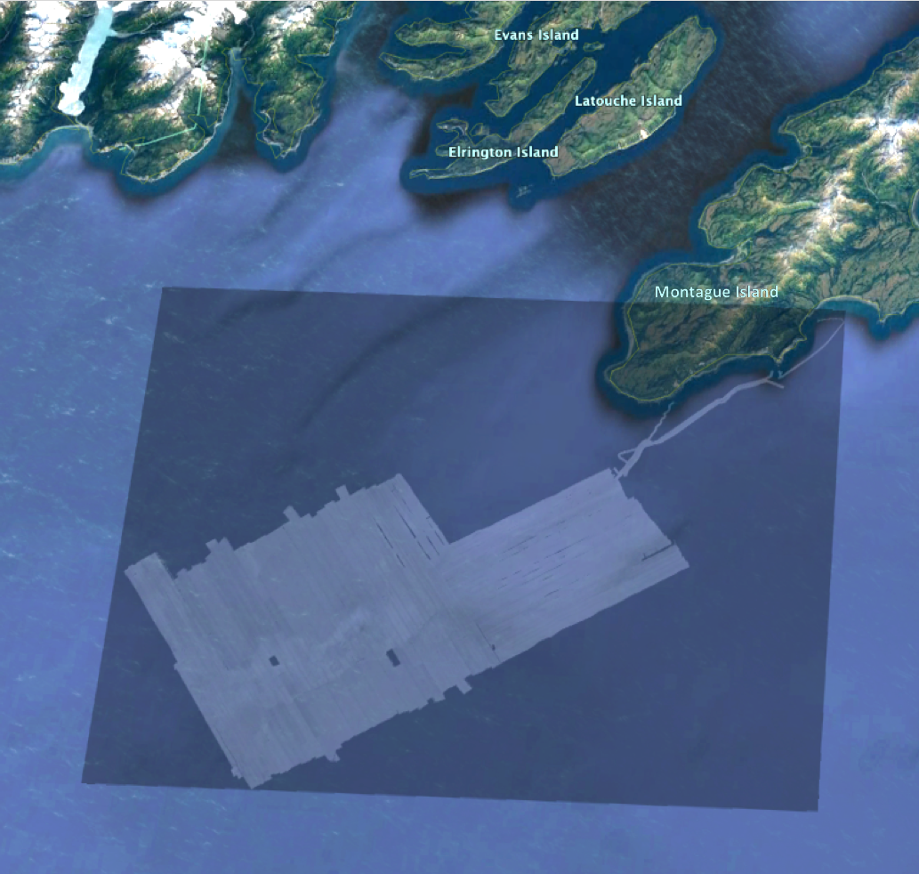 Map of acoustic-backscatter data southwest of Montague Island