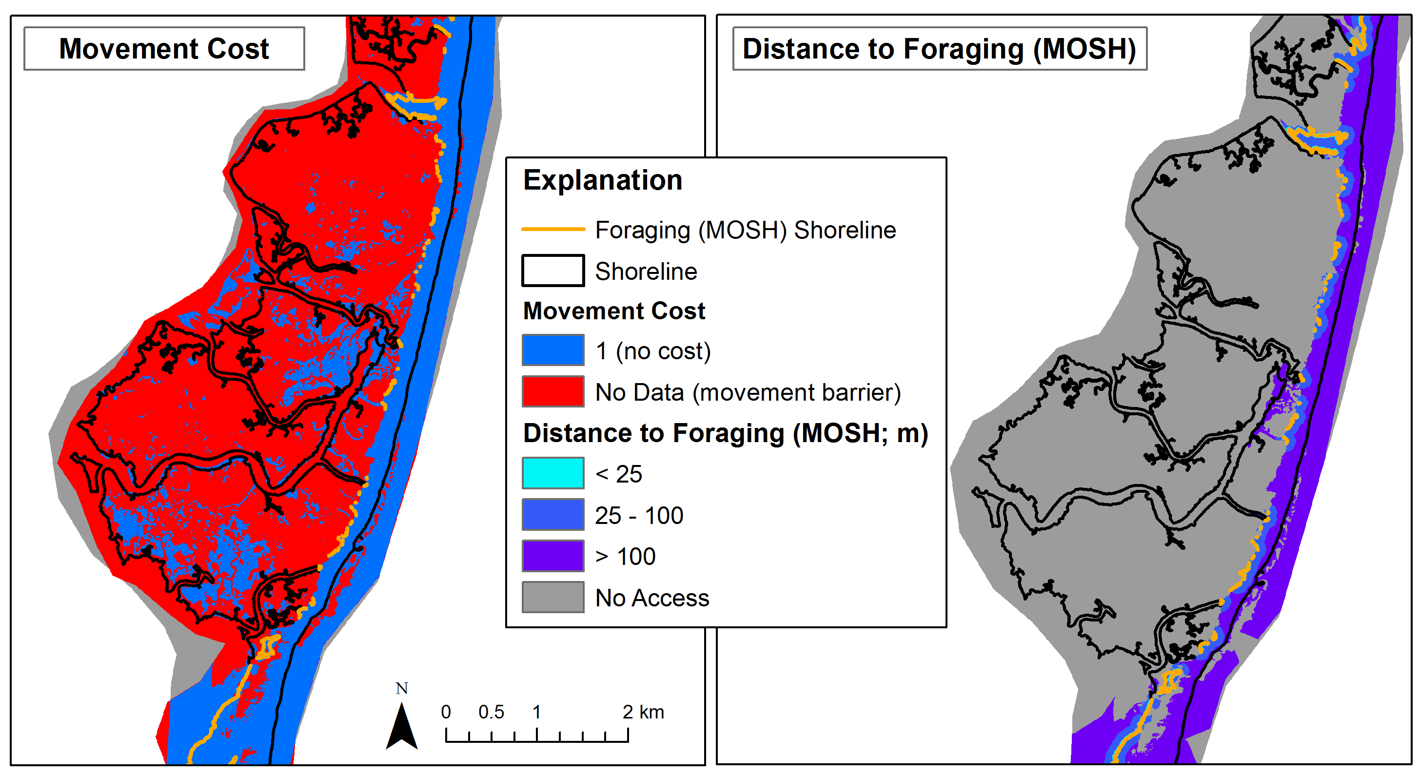 Example movement cost layer and least-cost path distance to low-energy foraging areas used by piping plovers. The foraging shoreline is displayed in orange overlaid on both layers. This example is for Cedar Island, VA and does not represent this dataset.